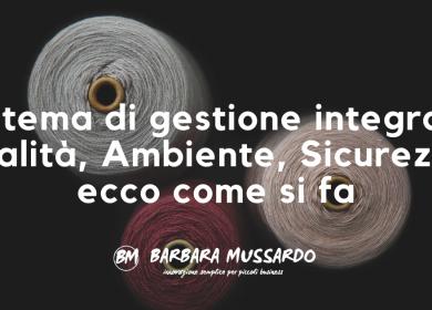sistema di gestione integrato_BarbaraMussardo