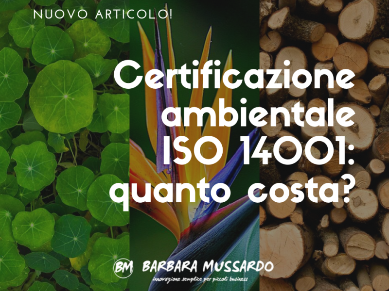 certificazione ambientale iso 14001 quanto costa
